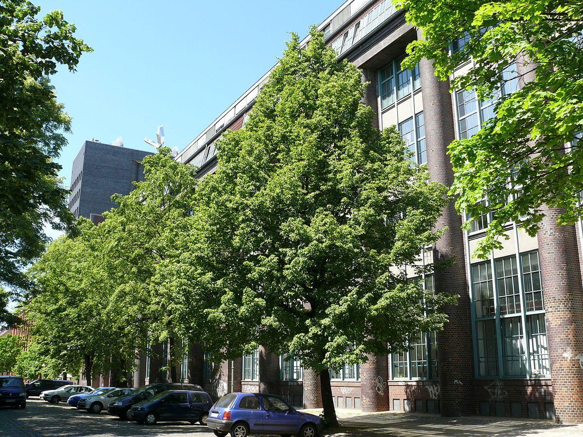Wyndham Hotel Berlin Excelsior