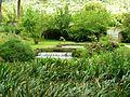 Giardino di Ninfa 11.jpg