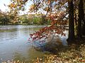 Gillette New Jersey river in autumn.jpg