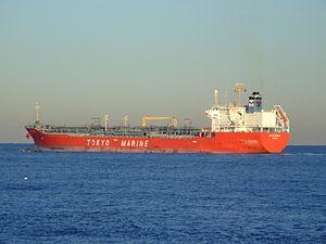 Ginga Cougar, Port of Rotterdam, Holland, 06Jan2009 pic2.JPG