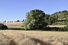 220px-Giono%27s_Manosque_landscape.JPG