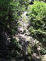 Glasenbachklamm waterfall4.jpg