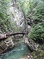 Gorges de Vintgar, Eslovènia (agost 2013) - panoramio (7).jpg