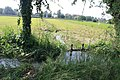 Gorgonzola - Parco Agricolo Sud Milano 11.jpg