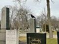 Grab jellinek grossmann Wiener Zentralfriedhof 2020-01-30.jpg