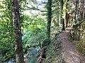 Greek forest path.jpg