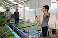 Green Age Aquaponics - Armenia 06.jpg