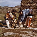 Greenlanders plucking a sea fowl.jpg
