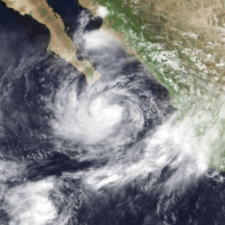 Hurricane Greg (1999) Category 1 Pacific hurricane in 1999