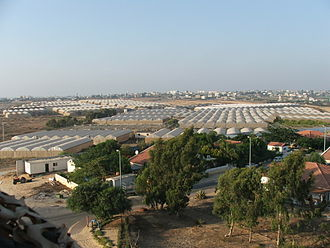 Gush Katif - Greenhouses, like these in Morag, were the center of the bloc's industry.