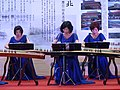 Guzheng Players of Yulin Guzheng Band on Stage 20150609.JPG