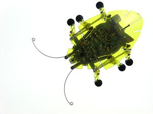 Insectoid - A small robot designed to replicate insect functionality