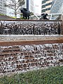 HK 中環 Central 交易廣場 Exchange Square sculpture Water Buffalo waterfall January 2020 SS2 06.jpg