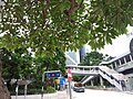 HK 中環 Central 天橋 footbridge 夏慤道 Harcourt Road August nearby 怡和大廈 Hutchison House August 2019 SSG 02.jpg