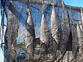 HK 西貢 Sai Kung 清水灣半島 Clear Water Bay Peninsula 布袋澳 Po Toi O Piers 鹹魚 dried salt fishes August 2018 SSG 04.jpg