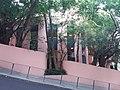 HK ML 香港半山區 Mid-levels 雅賓利道 the Albany Road April 2020 SSG 02.jpg