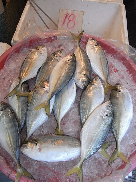 File:HK Yaumatei 新填地街 Reclamation Street market Ice little fishes HKD18.jpg