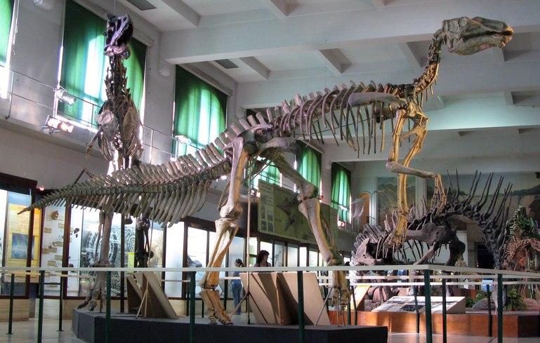 Hadrosaur museum