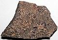 Halite salt casts (Carrara Formation, Cambrian) 5.jpg