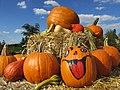 Halloween Kürbis - panoramio (1).jpg