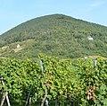 Hambacher Schloss - panoramio - Immanuel Giel (11).jpg
