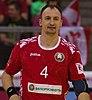 Handball-WM-Qualifikation AUT-BLR 004.jpg