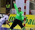 Handball-WM-Qualifikation AUT-BLR 112.jpg