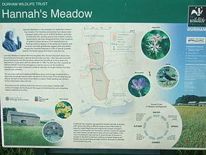 Hannah Hauxwell - Board describing aspects of Hannah Hauxwell's old farm