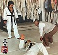 Hapkido doju Choi, Yong Sul & GM Lim, Hyun Soo at the JUNGKIKWAN 6.jpg