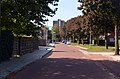 Heidebloemstraat, Hatertse Hei, Nijmegen.jpg