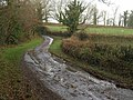 Hele Lane - geograph.org.uk - 1624945.jpg