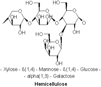 Hemicellulose - Most common molecular motif of hemicellulose