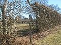 High Weald Landscape Trail through an orchard to Wittersham - geograph.org.uk - 1744060.jpg
