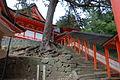 Hinomisaki-jinja kairo.jpg
