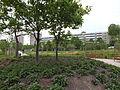 Hochzeitspark Marzahn 04-2014 ama fec (7).JPG