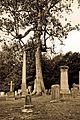 Hollywood Cemetery-9489.jpg