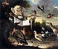 Hondecoeter, Melchior d' - Das Vogelkonzert - 1670.jpg