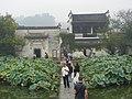 Hongcun - Lotus (8251554103).jpg