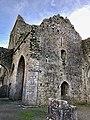 Hore Abbey, Caiseal, Éire - 46533743382.jpg