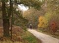 Horserider, Epping Forest - geograph.org.uk - 2173591.jpg