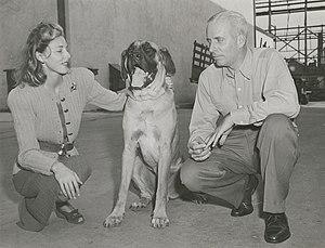 Slim Keith - Slim Keith with Howard Hawks and dog