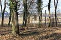 Hrobka Daubků - anglický park u kaple 14.JPG