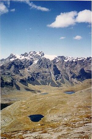 Central Andean wet puna - Huascarán National Park