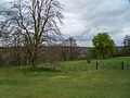 Hughenden Manor (6930235204).jpg