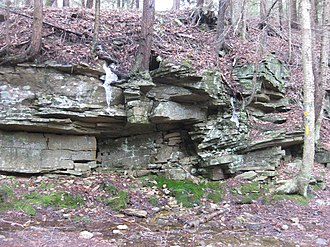 Huntley Mountain Formation - Outcrop of Huntley Mountain Formation along old railroad bed parallel to Loyalsock Creek north of Laporte, Pennsylvania