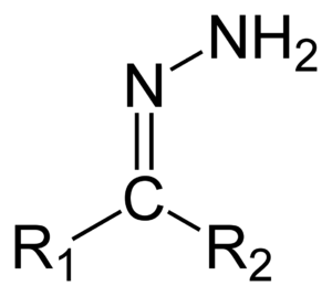 Hydrazone - Structure of the hydrazone functional group