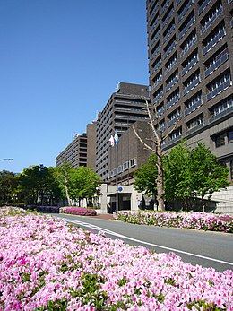 Hyogo prefectural office2816.jpg