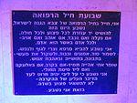 IDF medical corps memorial (2).jpg