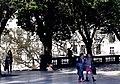 ID 181 Plaza San Martín 5350.jpg