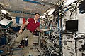ISS-51 Thomas Pesquet works inside the Columbus lab.jpg